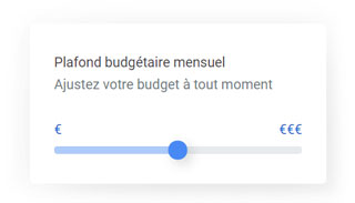 Budget Google Ads